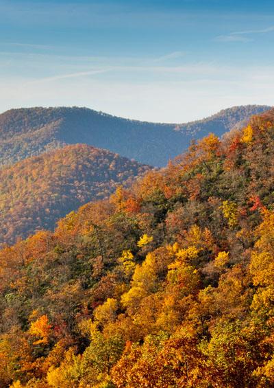 Vẻ Đẹp Trái Đất 10 : Rừng Mùa