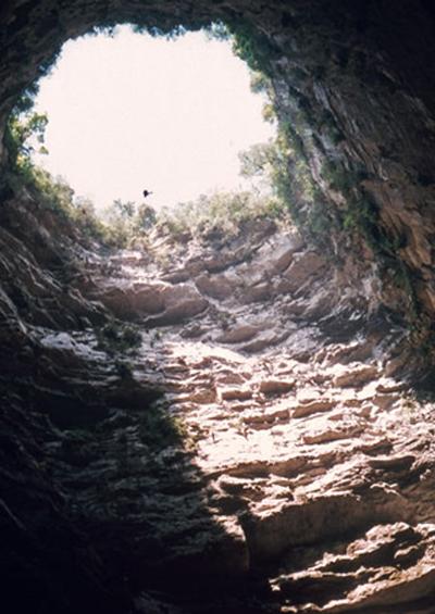 Vẻ Đẹp Trái Đất 4: Hang Nuốt Chửng ở Mexico